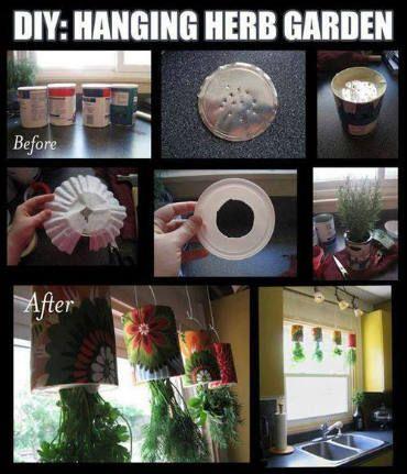 Indoor hanging herb garden...my next project!