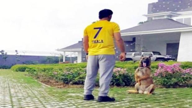 IPL:चेन्नई सुपरकिंग्स की वापसी से धोनी खुश, इंस्टाग्राम फोटो में खुद को बताया लीडर