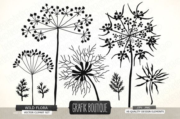 Check out Wild herbs flowers silhouette vector by GrafikBoutique on Creative Market