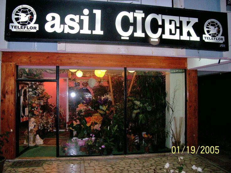 Asil Çiçek şu şehirde: Antalya, Antalya