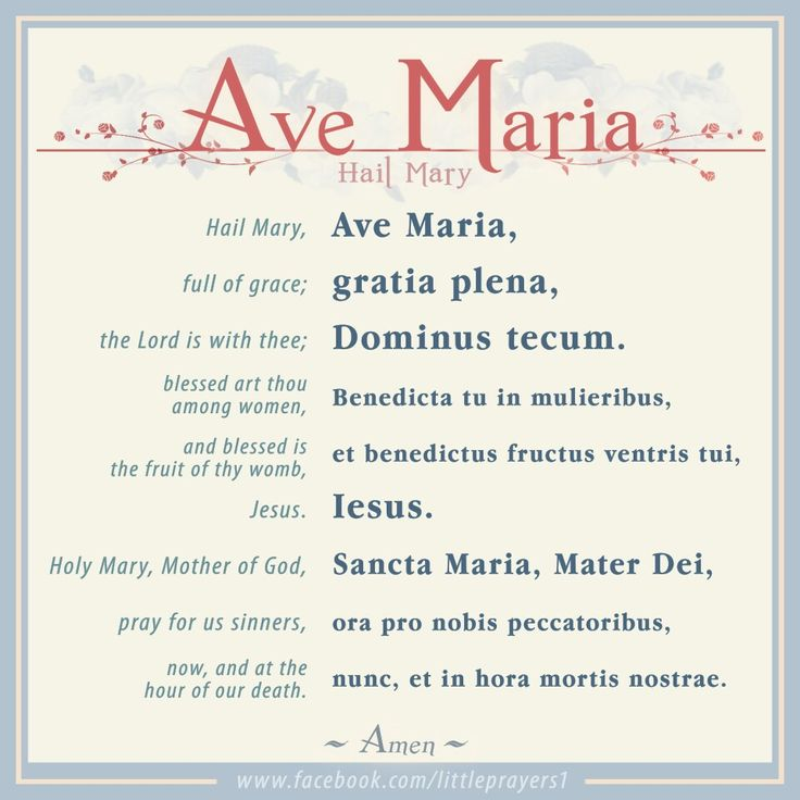 The Hail Mary in Latin. From www.facebook.com/littleprayers1