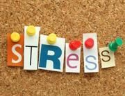 Le regole per lo stress «buono»   che allunga la vita delle cellule