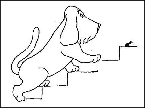 best james thurber images james thurber  james thurber dogs wildfires and larry woiwode