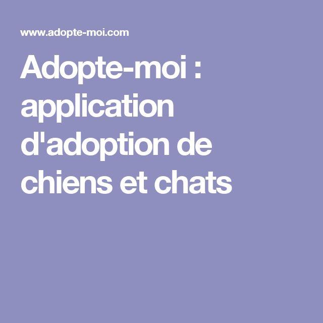 Adopte-moi : application d'adoption de chiens et chats