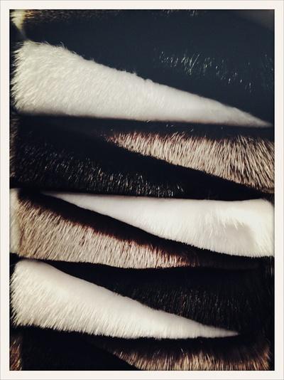 Graphic fur inspiration