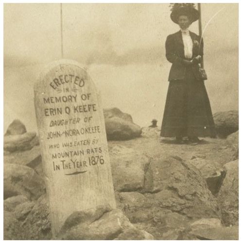 Read the epitaph. How unfortunate.