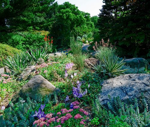 California Native Plant Garden Design not only can this make a small garden look bigger it encourages a slower walk and allows for transitions and more diverse planting California Native Landscape Designs Native Groundcoverslow Growing Herbaceous Plants For Sun And