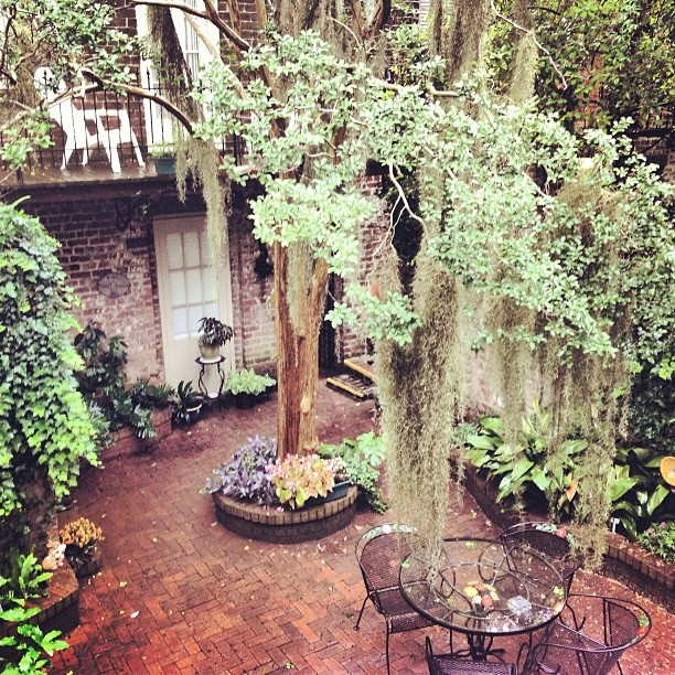 Romantic hidden gardens with draping Spanish Moss are perfect for enjoying lazy Sunday afternoons in Savannah…