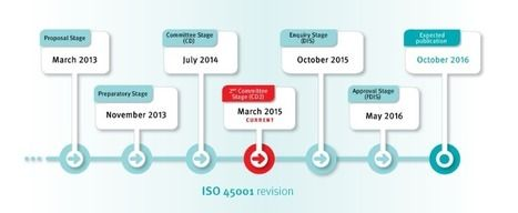ISO 45001 - Occupational health and safety | Workplace Accidents | Scoop.it