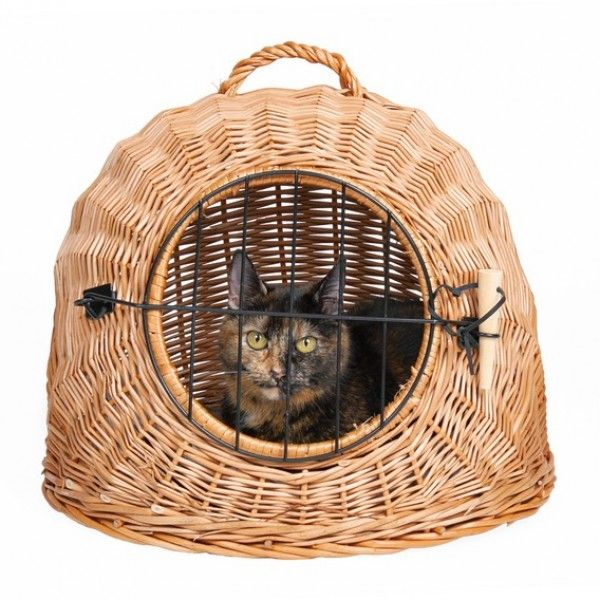 Wicker Cat Basket - Transport Carry Cave with Bars 3 sizes