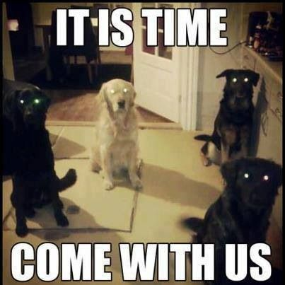 It is time, come with us