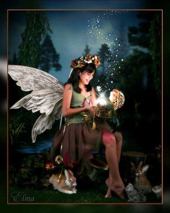 Adult fairy #5