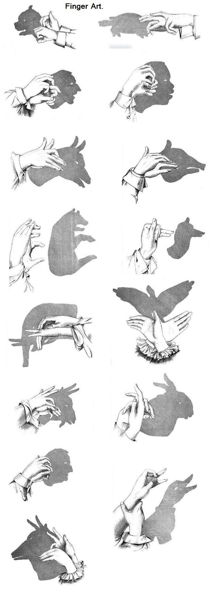 Shadow Puppets. if anyone does them.. post pics i wanna see : D.. don't forget to thumb www.funnyjunk.com/user/hundredninjas mor...