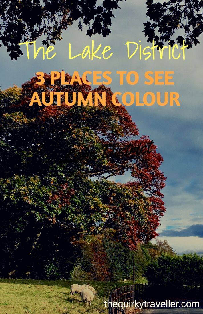 Here are 3 lovely places to view autumn colour #leefpeeping in southern Lake District, Cumbria, England