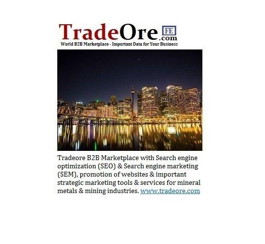 Tradeore B2B Market