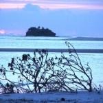 Azoush Tourist Guest House – Fulhadhoo Island – Baa Atoll - Maldives