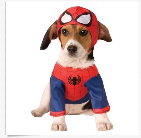 ebay promo codes october 2016 funny dog halloween costumes - Ebaycom Halloween Costumes