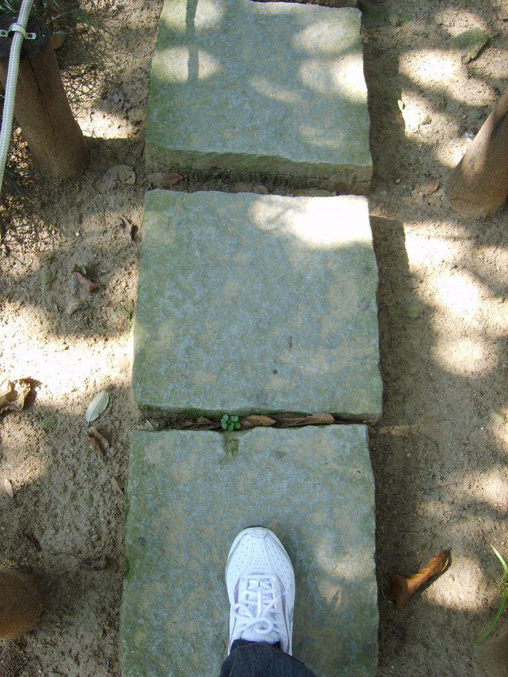 pedras jardim botanico:1000+ images about Plantas on Pinterest