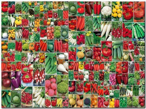 Фотографии на стене сообщества – 51 087 фотографий | ВКонтакте