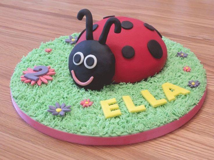 Cute ladybird cake
