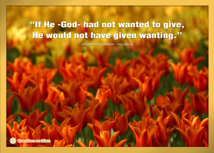 """If He -God- had not wanted to give,  He would not have given wanting.""  (Risale-i Nur Collection - The Letters)    www.questionsonislam.com"