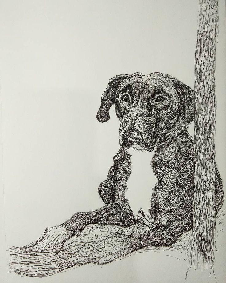 "Dibujo de perro  ⭐ Julián Pito (@julianpito.art) en Instagram: ""El viejo jeronimo.  Rapidografo sobre papel  21x27 cm Comisiones al DM 📩 #dibujo #perro #boxer…"""