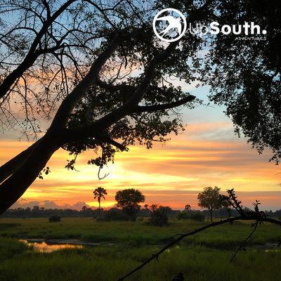 Good morning from the #okavangodelta #sunrise #africa #motorcycletours #wanderlust #adventuretrav