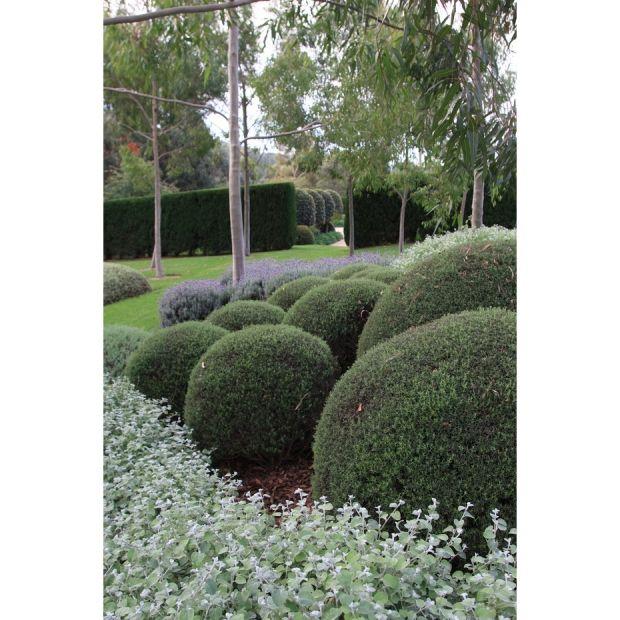 Robert Boyle Landscaping - Moorooduc
