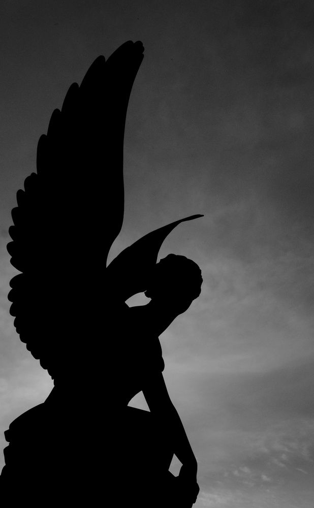 1000 images about silhouette art inspiration on pinterest
