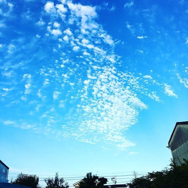 Instagram media by matsu8969 - . . 朝 . うろこ雲 . 秋の気配? . . #イマソラ #うろこ雲 #instagood…