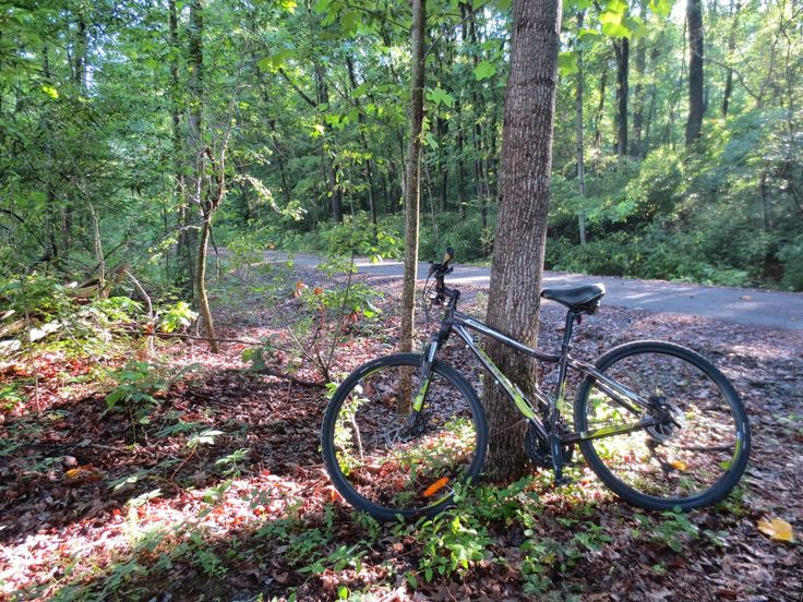The Travelling Lindfields: Cycling the Tunnel Hill State Trail in Illinois