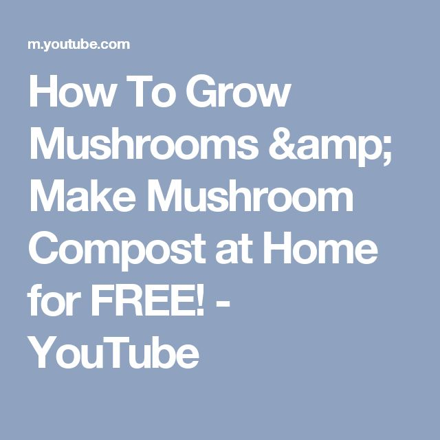 How To Grow Mushrooms & Make Mushroom Compost at Home for FREE! - YouTube