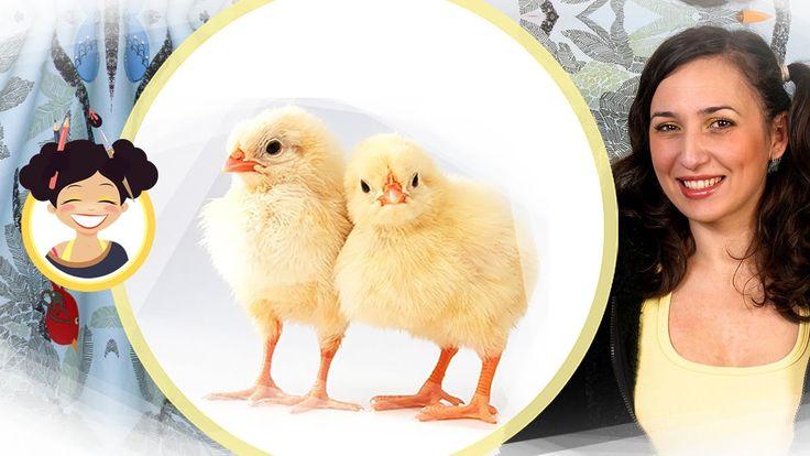 Să-ncepem luna februarie prezentandu-vă noul nostru proiect care ne-a cam ținut treji în ultima perioadă! Sperăm să vă ajute în explicarea desenului copiilor între 2 și 6 ani, poate și mai mari! Lectia #1: Un puiuț de găină! Like, share & subscribe, vă rog!  :)