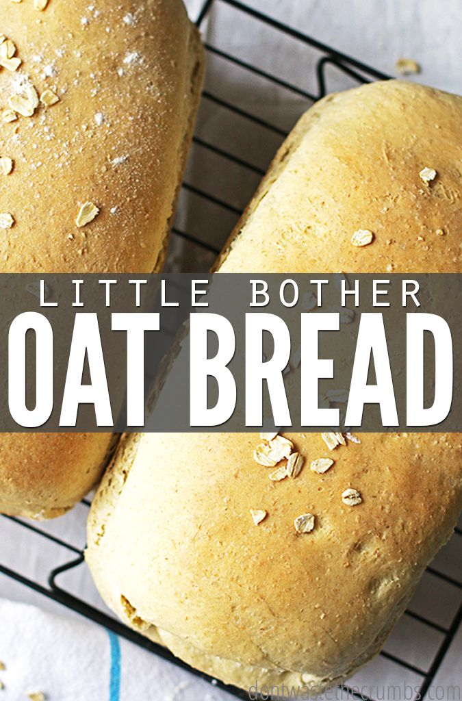 Very Little Bother Oat Bread | Recipe | Easy recipes ...