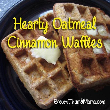 Hearty Oatmeal Cinnamon Waffles...bake extra and freeze for quick breakfast, or even use to make a PB & J sandwich for the kids.