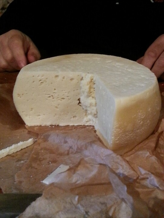 Formaggio pecorino  Cheese just made #pecorino #cheese