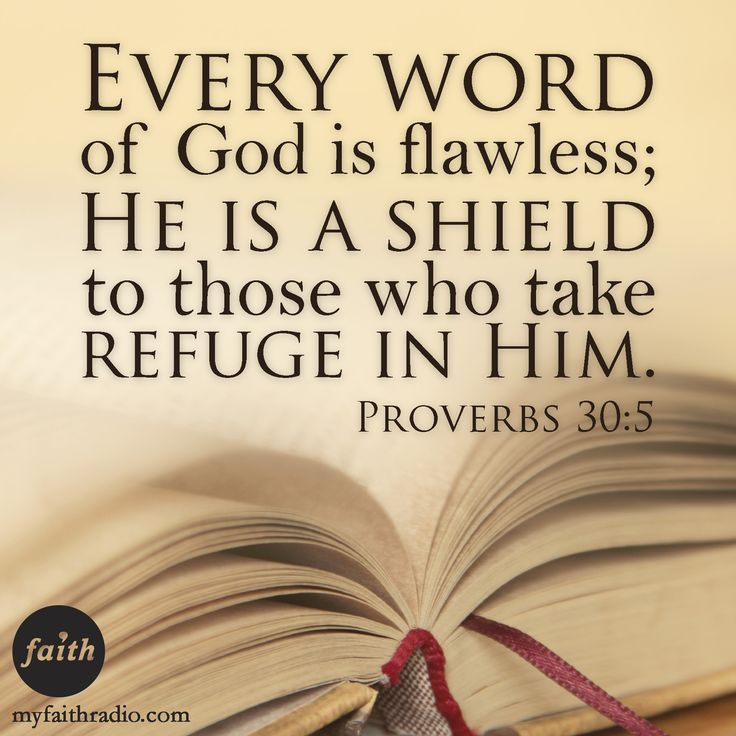 Proverbs 30: 5 Every word of God is flawless; He is a shield to those who take refuge in Him. -