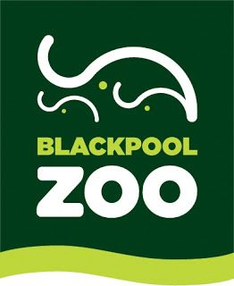Zoo Jobs: Section Head – Large Mammals