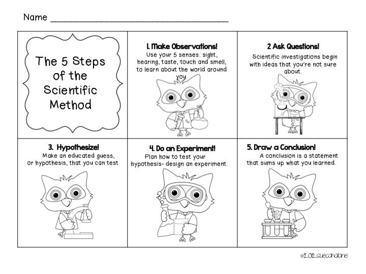 12 best Scientific method images on Pinterest Science ideas - scientific method worksheet