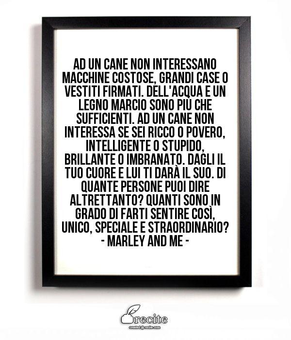 Ad un cane non interessano macchine costose, grandi case o vestiti firmati. Dell'acqua  e un legno marcio sono più che sufficienti. Ad un cane non interessa se sei ricco o povero, intelligente o stupido, brillante o imbranato. Dagli il tuo cuore e lui ti darà il suo.  Di quante persone puoi dire altrettanto? Quanti sono in grado di farti sentire così, unico, speciale e straordinario?                            - Marley and me - - Quote From Recite.com #RECITE #QUOTE