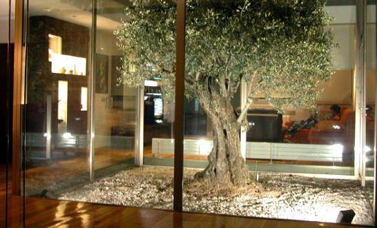 Jardin interior con escaleras buscar con google frozen for Casas con jardin interior