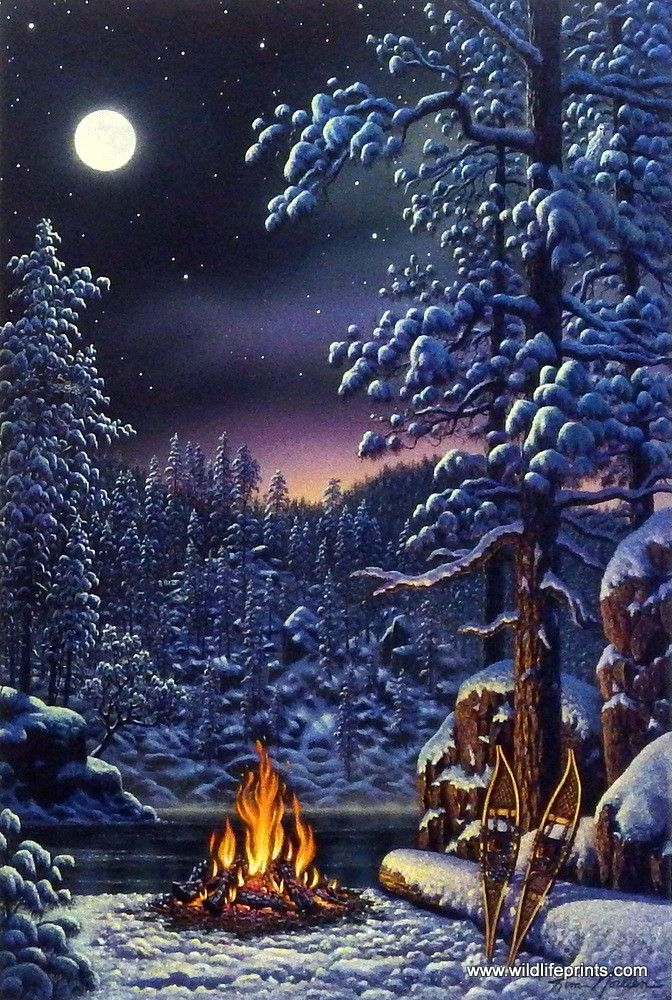 On the night of a full moon the northern lights are peaking out of the trees over a camp fire on a wonderful winter night in Kim Norlien's Fire and Ice.