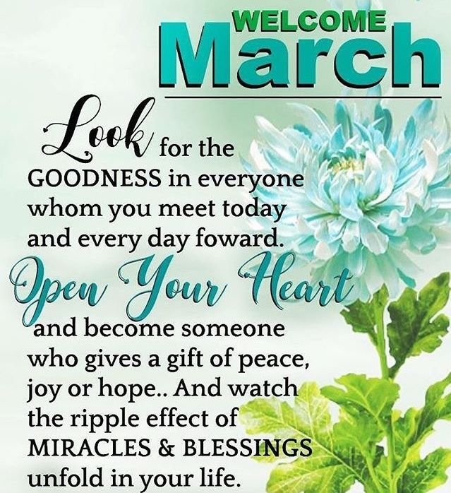 Hello my family & friends around the world May this new month bring you more blessings, more happiness, less worries and brighter days. Find the good in every day, and leave the negatives of yesterday behind you. This is a chance to start anew. God Bless You All ❤️ #newmonth #march #newdays #newnights #newweeks #newbeginning #newstart #blessed #thankful #grateful #love #peace #happiness #blessing