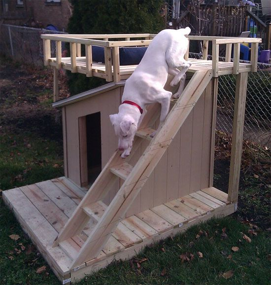 Wouldn't Fido love this DIY dog house with a rooftop deck?