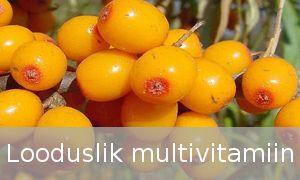 Astelpajus leidub vitamiine kordades rohkem kui teistes taimedes – näiteks on astelpajus A-vitamiini 3x rohkem kui porgandites, C-Vitamiini 10x rohkem kui apelsinides ning E-vitamiini 4x rohkem kui päevalilleseemnetes.