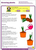 Outstanding Science Year 2 - Plants | Growing plants