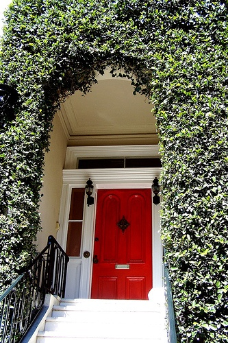 Stately Red Door Surrounded By Shrubbery.
