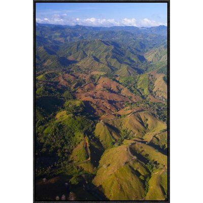 East Urban Home 'Lowland Tropical Rainforest Cleared for Cattle Farming, Soberania National Park, Panama' Photographic Print Size: