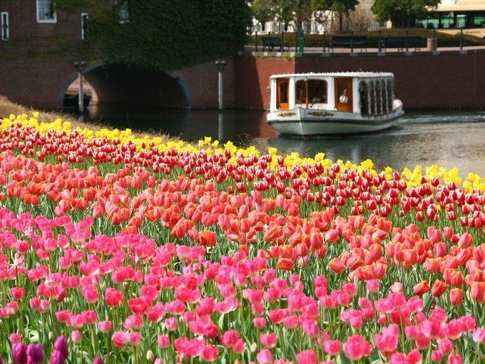 春の絶景に会いにいこう!この春大注目の『絶景お花畑』ランキングTOP7   RETRIP