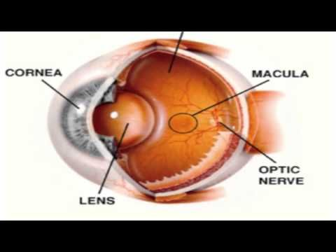 Macular Pucker Natural Treatment